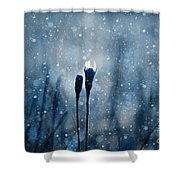 Le Centre De L Attention - S02-01at3b Shower Curtain by Variance Collections