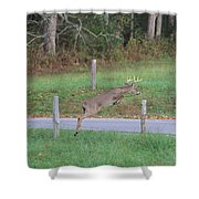 Leaping Buck In Smoky Mountains Shower Curtain by Dan Sproul