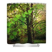 Leaves In My Hair Shower Curtain by Laurie Search