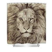 Leo Shower Curtain by Eric Fan