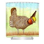 Lesser Prairie Chicken Shower Curtain by Jack Pumphrey