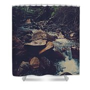 Life Flows On Shower Curtain by Laurie Search