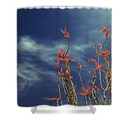 Like Flying Amongst The Clouds Shower Curtain by Laurie Search