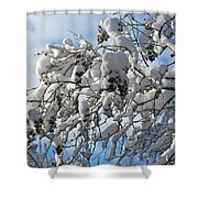 Lilac In Winter Shower Curtain by Michele Myers