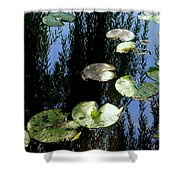 Lilly Pad Reflection Shower Curtain by Frozen in Time Fine Art Photography