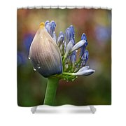 Lily Of The Nile Shower Curtain by Rona Black