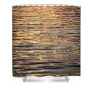 Liquid Gold Shower Curtain by Elena Elisseeva