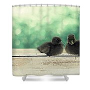 Little Buddies Shower Curtain by Amy Tyler