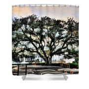 Live Oak Artistic Trendering Shower Curtain by Dan Friend