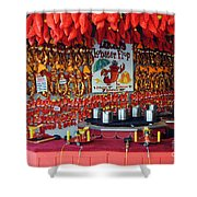 LOBSTER FLOP Shower Curtain by Skip Willits