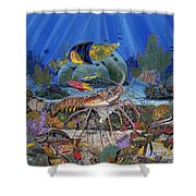Lobster Sanctuary Re0016 Shower Curtain by Carey Chen