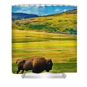 Lone Buffalo Shower Curtain by Jeff Kolker