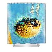 Long-spine Fish Shower Curtain by Daniel Janda