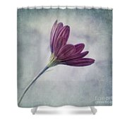 looking for you Shower Curtain by Priska Wettstein