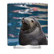 Looking Up Shower Curtain by Douglas Barnard