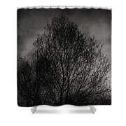 Lost In Moments Shower Curtain by Taylan Soyturk