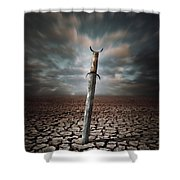 Lost Sword Shower Curtain by Carlos Caetano