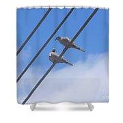 Love Is In The Air Shower Curtain by Chrisann Ellis