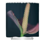Lovely Things Shower Curtain by Laurie Search