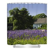 Lupine Flowers Near Round Pond Maine Shower Curtain by Keith Webber Jr