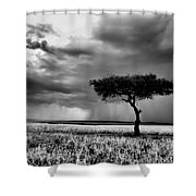 Maasai Mara In Black And White Shower Curtain by Amanda Stadther