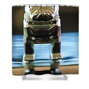 Mack Truck Hood Ornament 2 Shower Curtain by Jill Reger