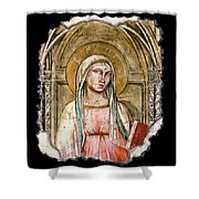 Madonna Del Parto Shower Curtain by Steve Bogdanoff
