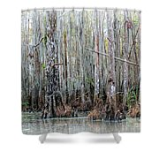 Magical Bayou Shower Curtain by Carol Groenen