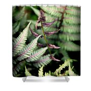 MAGICAL FOREST 3 Shower Curtain by KAREN WILES