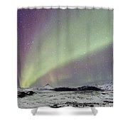 Magical Night Shower Curtain by Evelina Kremsdorf