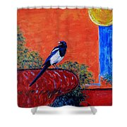 Magpie Singing At The Bath Shower Curtain by Xueling Zou