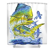 Mahi Mahi Shower Curtain by Carey Chen