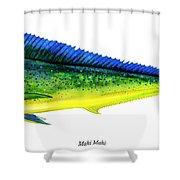 Mahi Mahi Shower Curtain by Charles Harden