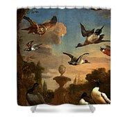 Mallard Golden Eagle Wild Fowl in Flight Shower Curtain by Melchior de Hondecoeter