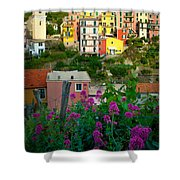 Manarola Flowers And Houses Shower Curtain by Inge Johnsson