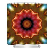 Mandala 103 Shower Curtain by Terry Reynoldson