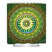 Mandala Green Shower Curtain by Bedros Awak