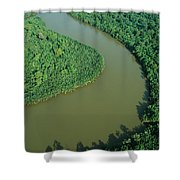 Mangrove Rhizophora Sp In Mahakam Delta Shower Curtain by Cyril Ruoso