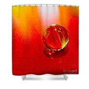 Marble Shine Shower Curtain by Debbie Portwood