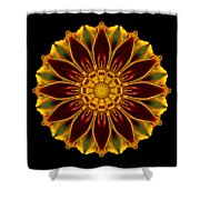 Marigold Flower Mandala Shower Curtain by David J Bookbinder