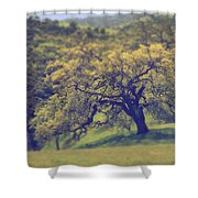 Maybe It's Better This Way Shower Curtain by Laurie Search