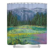 Meadow In The Cascades Shower Curtain by David Patterson