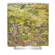 Meadow with Butterflies Shower Curtain by Vincent Van Gogh