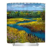 Meandering Stream Shower Curtain by David Patterson