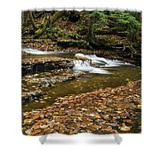Meandering Waters Shower Curtain by Christina Rollo