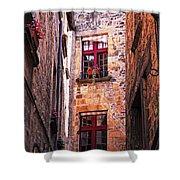 Medieval Architecture Shower Curtain by Elena Elisseeva