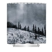 Melancholia Pines And Trees Shower Curtain by Priska Wettstein