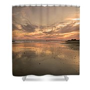 Memories Shower Curtain by Betsy C  Knapp