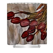 Mes Tulipes Shower Curtain by Aimelle