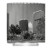 Miami Cityscape  Bw Shower Curtain by Rudy Umans